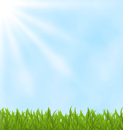 Illustration summer background with green field and sky - vector illustration
