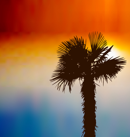 Illustration tropical background with palm tree at sunset - vector illustration