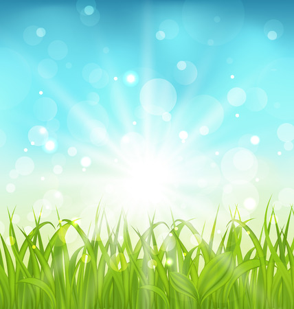 Illustration spring nature background with grass - vector illustration