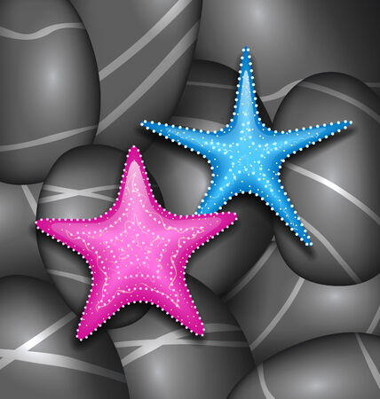 cobblestone: Illustration starfishes among sea pebble stones - vector