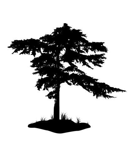 Illustration tree silhouette isolated on white background - vector illustration