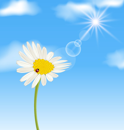 lady cow: Illustration chamomile flower and blue sky with clouds - vector