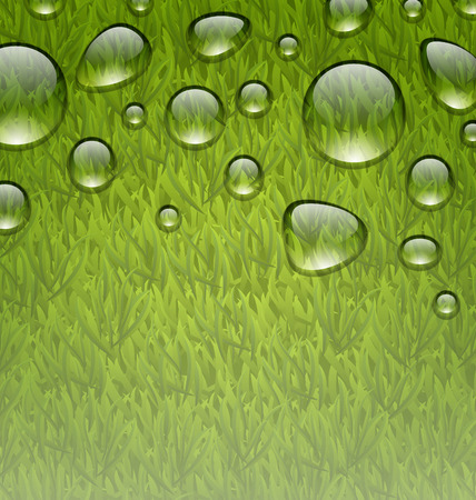 grass texture: Illustration eco friendly background with water drops on fresh green grass texture - vector Illustration