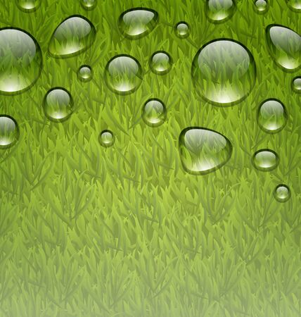 grass texture: Illustration eco friendly background with water drops on fresh green grass texture - vector Stock Photo