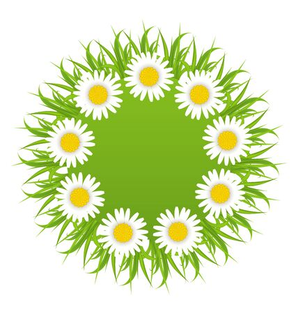 freshness: Illustration spring freshness round card with grass and camomiles flowers - vector Stock Photo