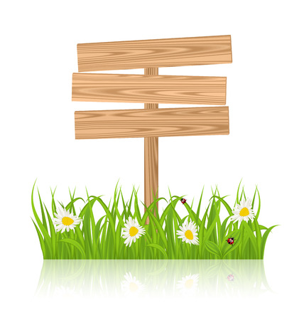 guidepost: Illustration wooden signboard for guidepost with field green grass and camomile and ladybugs - vector Stock Photo