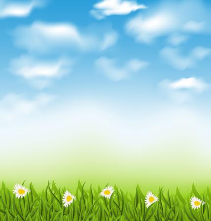 speelveld gras: Illustratie lente natuurlijke achtergrond met blauwe hemel, wolken, gras veld en bloemen chamomiles - vector