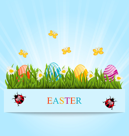 pascua: Illustration greeting card with Easter colorful eggs and camomiles in green grass - vector
