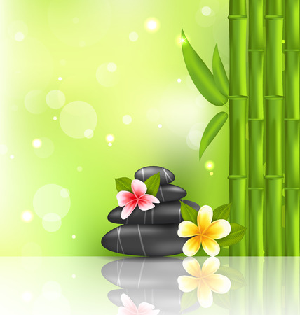 Illustration meditative oriental background with frangipani, bamboo and heap stones, spa therapy - vector Vector