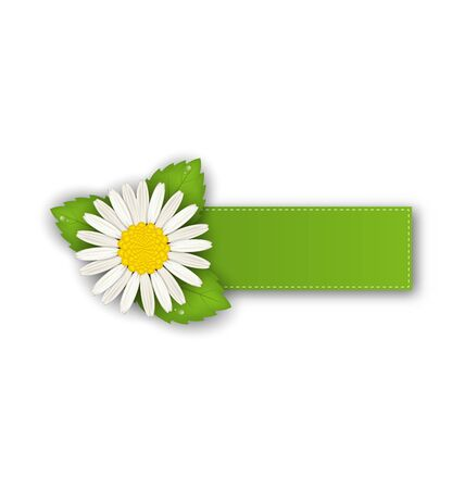 Illustration label or offer sticker with flower daisy, isolated on white background illustration