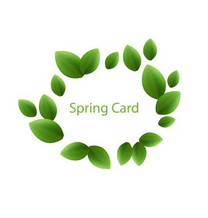 freshness: Illustration spring freshness card made in eco green leaves, isolated on white background