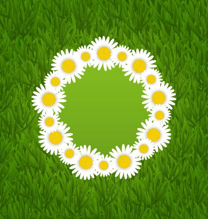 camomiles: Illustration spring freshness card with grass and camomiles flowers