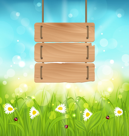 camomiles: Illustration spring morning, meadow and camomiles with wooden sign, natural landscape - raster Stock Photo