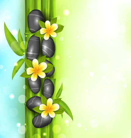 bamboo therapy: Illustration spa therapy background with bamboo, stones and frangipani flowers (plumeria)