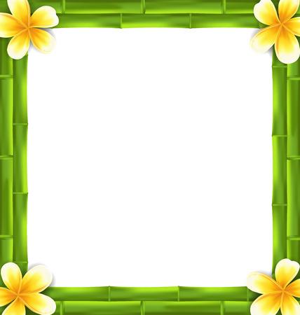 Illustratie Natuurlijke Frame Gemaakt Bamboe en Frangipani Bloemen Copy Ruimte voor uw tekst Vector