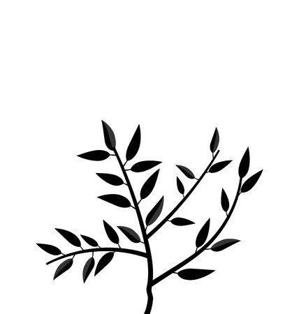 Illustration Black Silhouette Branch Tree with Leafs Frame for Design isolated on white - vector