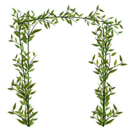 twined: Illustration Arch Twined Bamboo Branch with Green Leafs isolated on white - vector