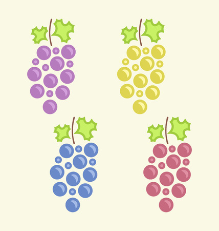 Illustration Set Colorful Bunches of Grape, Vintage Flat icons - raster illustration