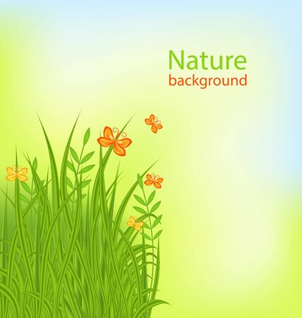 green plants: Illustration Summer Background with Grass and Butterflies - raster