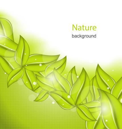 sfondo natura: Sfondo di natura con foglie verdi Eco