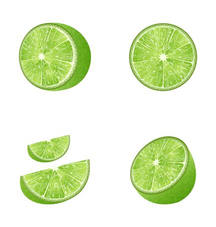 citric: Illustration Set of Fruit Lime Isolated on White Background