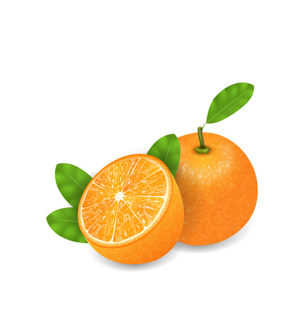 orange cut: Illustration Photo Realistic Set Orange Fruits, Cut and Slices, Ripe Citrus - Vector