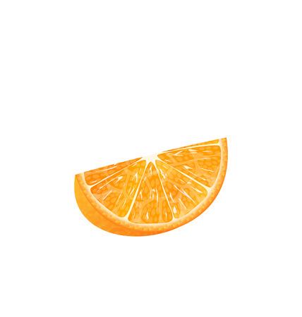 orange slice: Illustration Orange Slice Isolated on White Background - Vector
