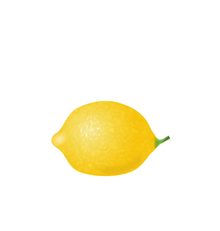 Illustration Photorealistic Lemon Isolated on White Background - Vector Illustration