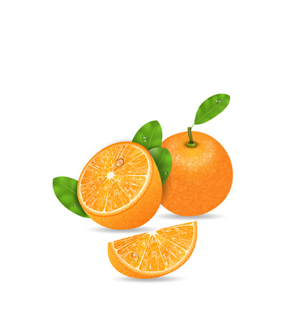 orange cut: Illustration Set Orange Fruits, Cut and Slices, Ripe Citrus - Vector Illustration
