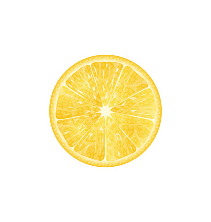 Illustration Lemon Slice Isolated on White Background - Vector