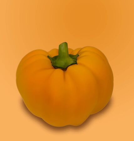 veg: Illustration Pumpkin Vegetable with Shadow - raster Stock Photo