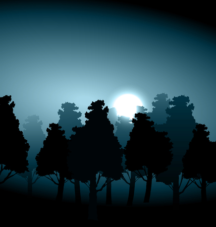 multilevel: Valley in the middle of forest in the moonlight morning fog - raster illustration
