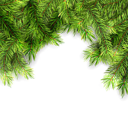 twigs: Illustration Natural Framework with Fir Twigs, Copy Space for Your Text - Vector Illustration