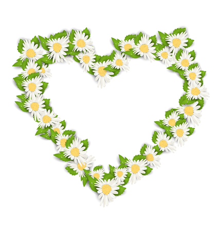 Illustration Camomile Flowers in Form Heart Isolated on White Background. Spring Card - Vector