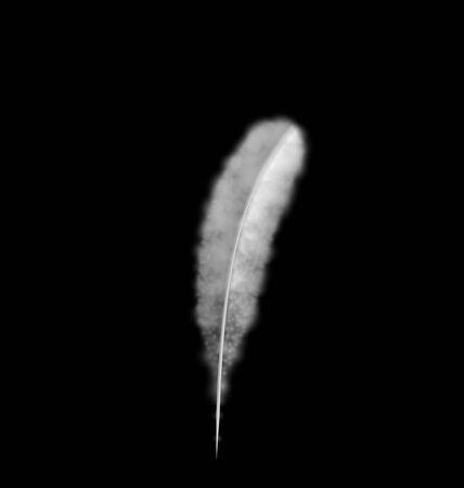 piuma bianca: Stile penna concetto di design semplice chiaro, immagine a forma di fumo piuma bianca isolato su sfondo nero - vettore