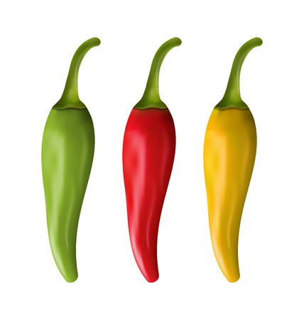chilly: Illustration Set of Colorful Chili Peppers Isolated on White Background - Vector