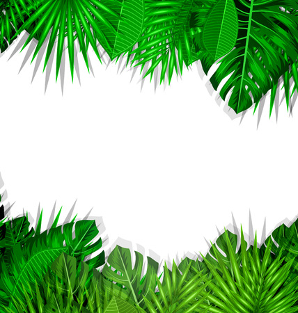 wilds: Illustration Natural Frame with Green Tropical Leaves, Summer Beautiful Background - raster Stock Photo