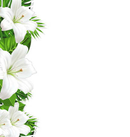 wilds: Frame border background branch with tropical leaves and white flowers lily, space for text, design template - vector