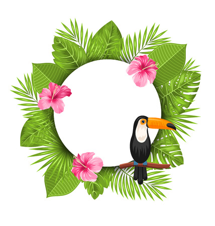 tucan: Illustration Clean Card with Pink Roses Mallow, Toucan Bird on Branch and Green Tropical Leaves - Vector Illustration