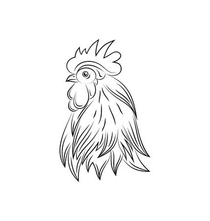 Illustration Head of Rooster, Hand Drawn Style, Cock Isolated on White Background -