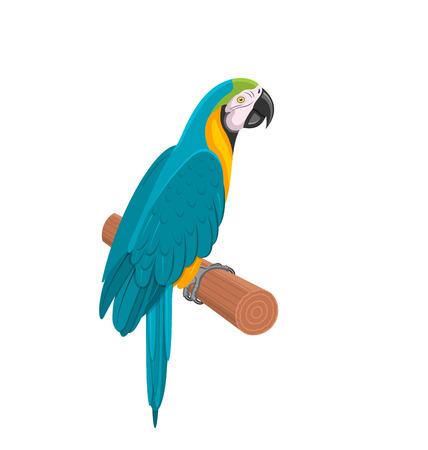 specie: Illustration Pretty Blue Parrot Ara on Branch. Bird Isolated on White Background. Endangered Animal - Vector Illustration
