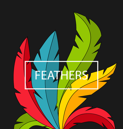 Creative Background with Colorful Feathers