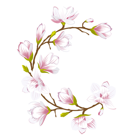 Round Frame Made of Beautiful Magnolia Flowers 일러스트