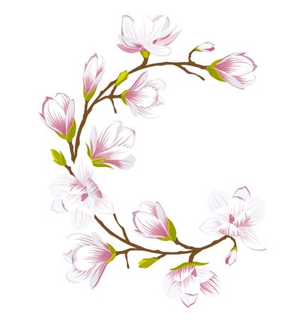 Round Frame Made of Beautiful Magnolia Flowers Illustration