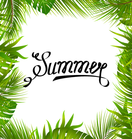 Lettering Text Summer with Border made in Palm Leaves Illustration