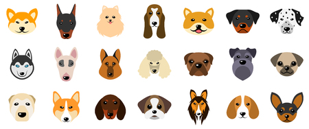 Set Heads of Dogs, Collection Different Breeds of Canines, Isolated on White Background Stock Photo