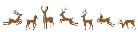 Set of Deers Isolated. Sika Deers, Reindeers, Stags - Illustration Vector Vector Illustratie