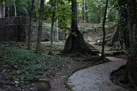 Mayan ruins in Palenque, Mexico photo