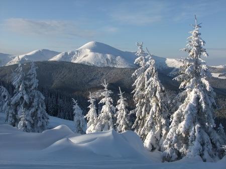 cima montagna: Cima della montagna bianca.