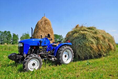 Hay preparation Stock Photo - 9766308